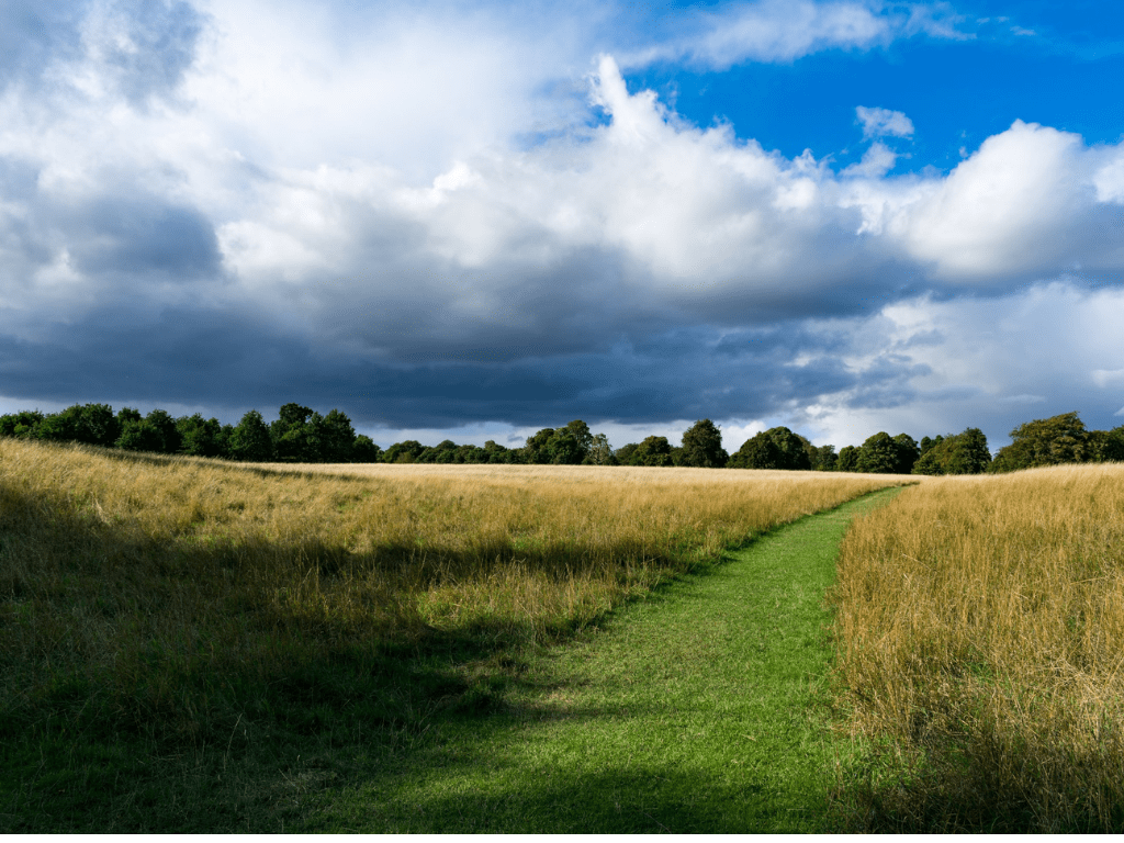 Investing in land